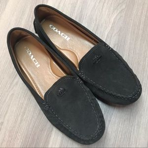 Coach Amber Suede Driving Loafers